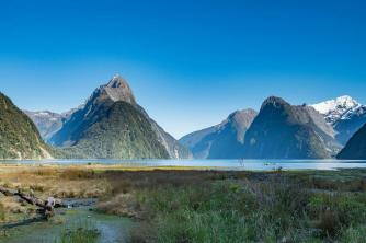 Completely Milford Sound